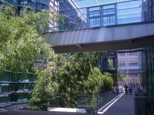 CCSR walkway