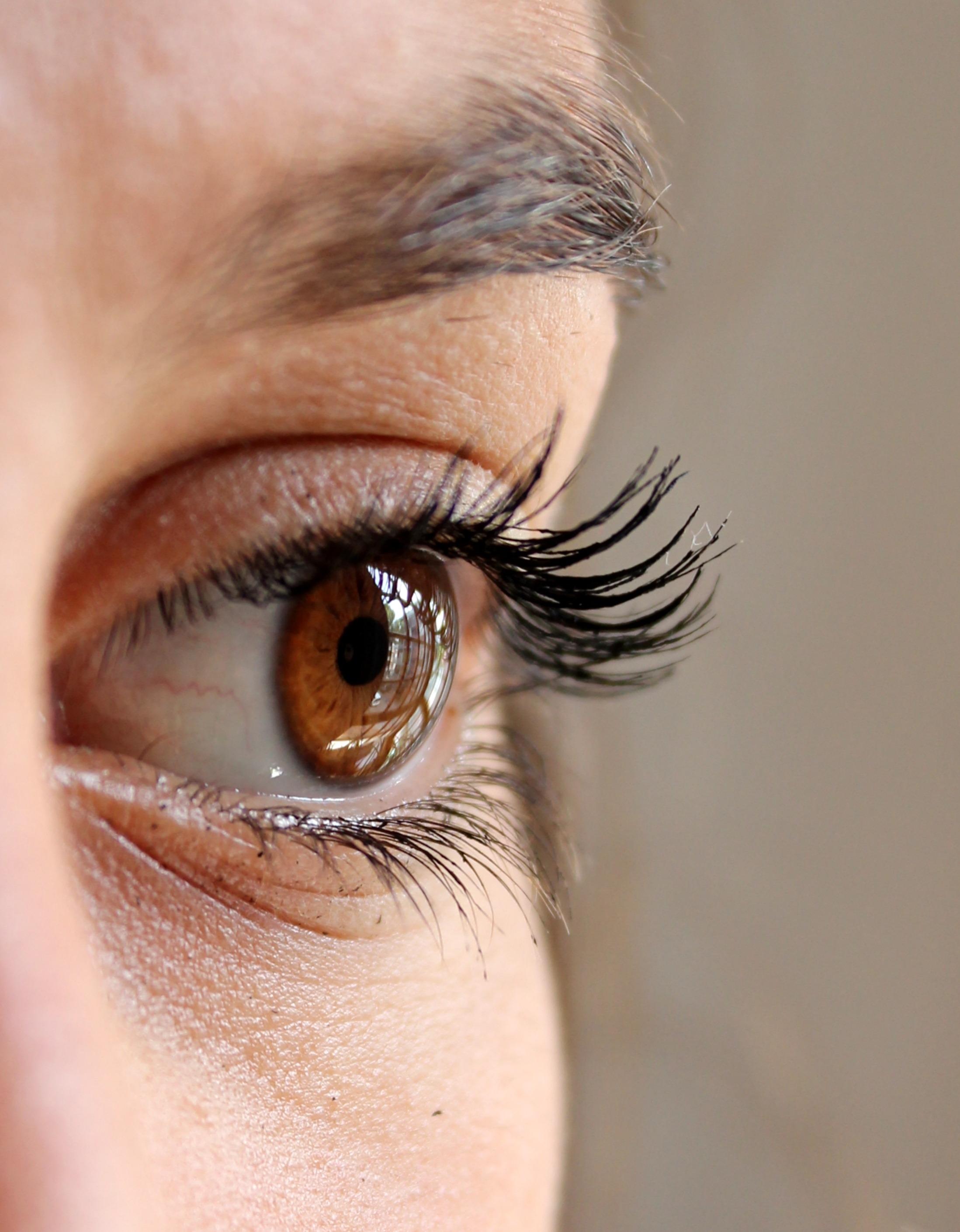 eye-211610